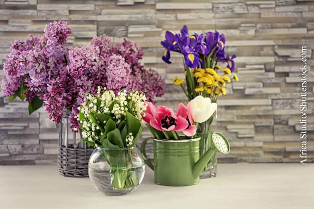 Flieder und Maiglöckchen sind Frühlingsboten mit intensivem Duft.