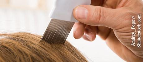 Was hilft gegen Kopfläuse?, © Andrey_Popov/Shutterstock