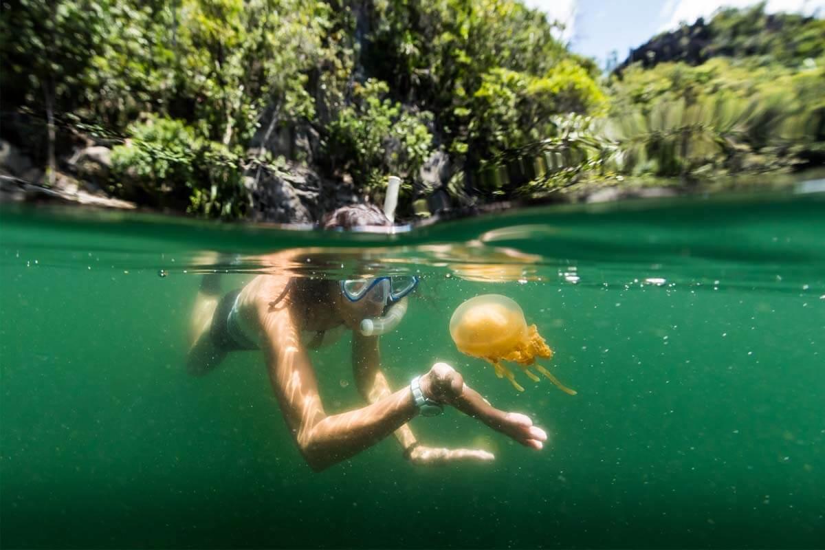Beim Baden im Meer ist ein Kontakt mit Quallen nicht auszuschließen.