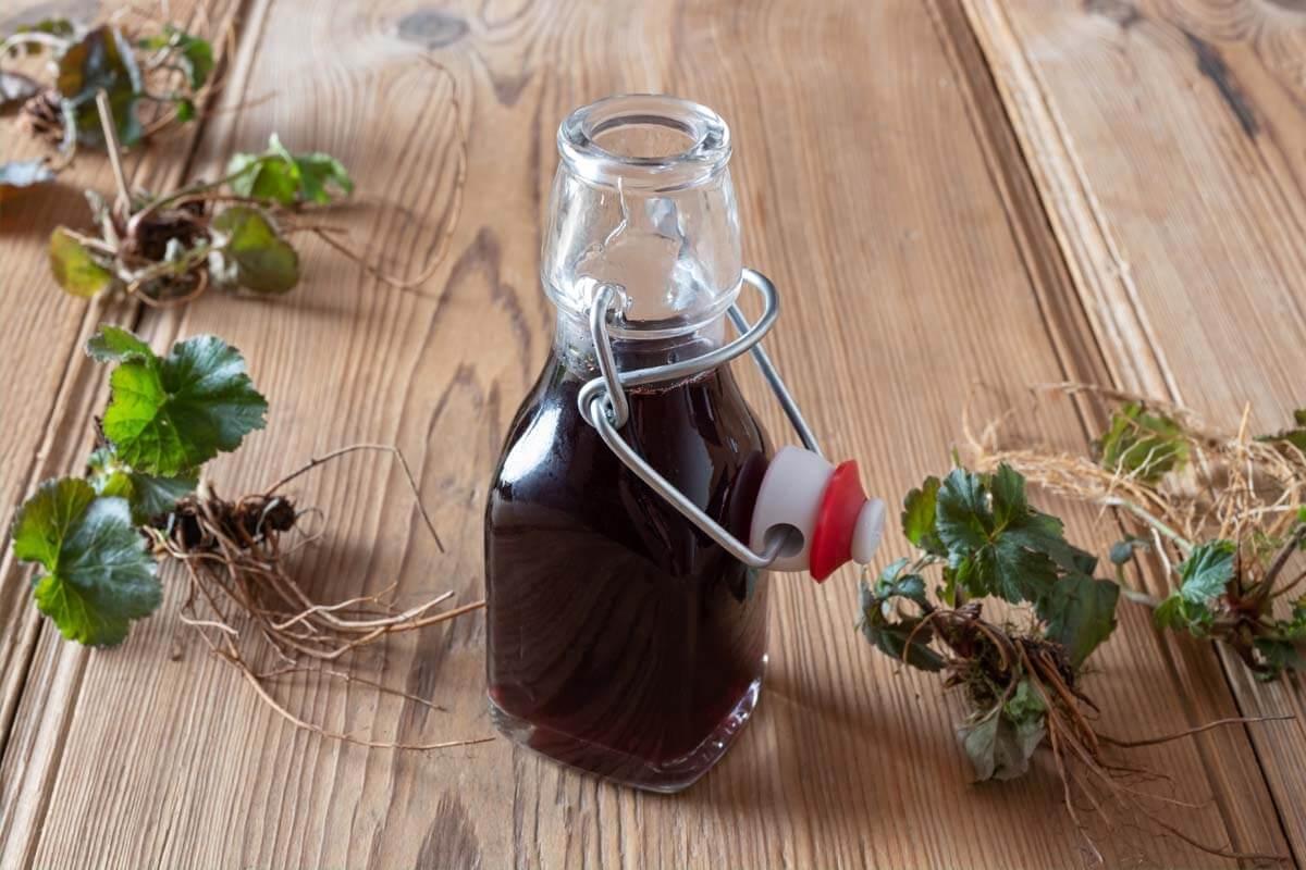 Hilgegard von Bingens Rezepte werden auch heute noch angewendet.