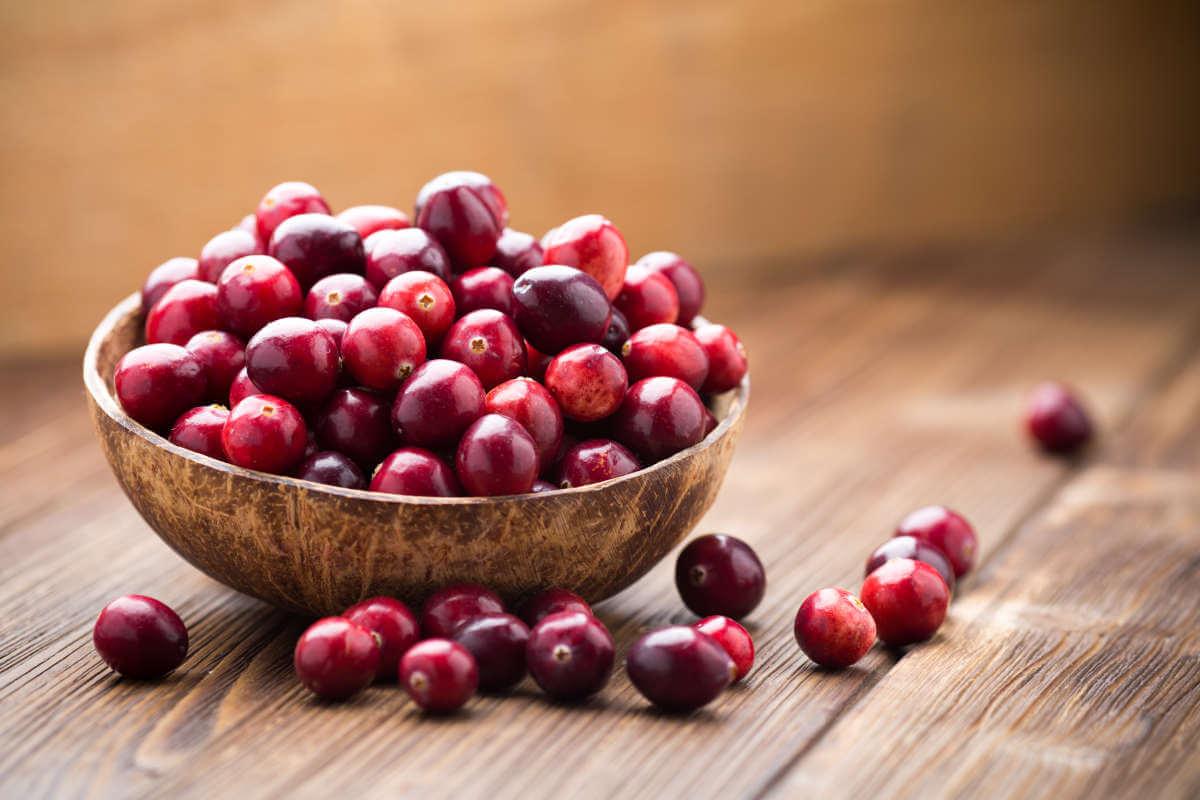 Nahrungsergänzung im Blick: Cranberry-Produkte, © Gita Kulinitch Studio/Shutterstock.com