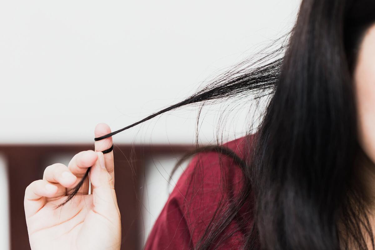 Gesundes Haar ohne Spliss und Schuppen: Mit der richtigen Pflege fühlt sich die Kopfhaut wohl.
