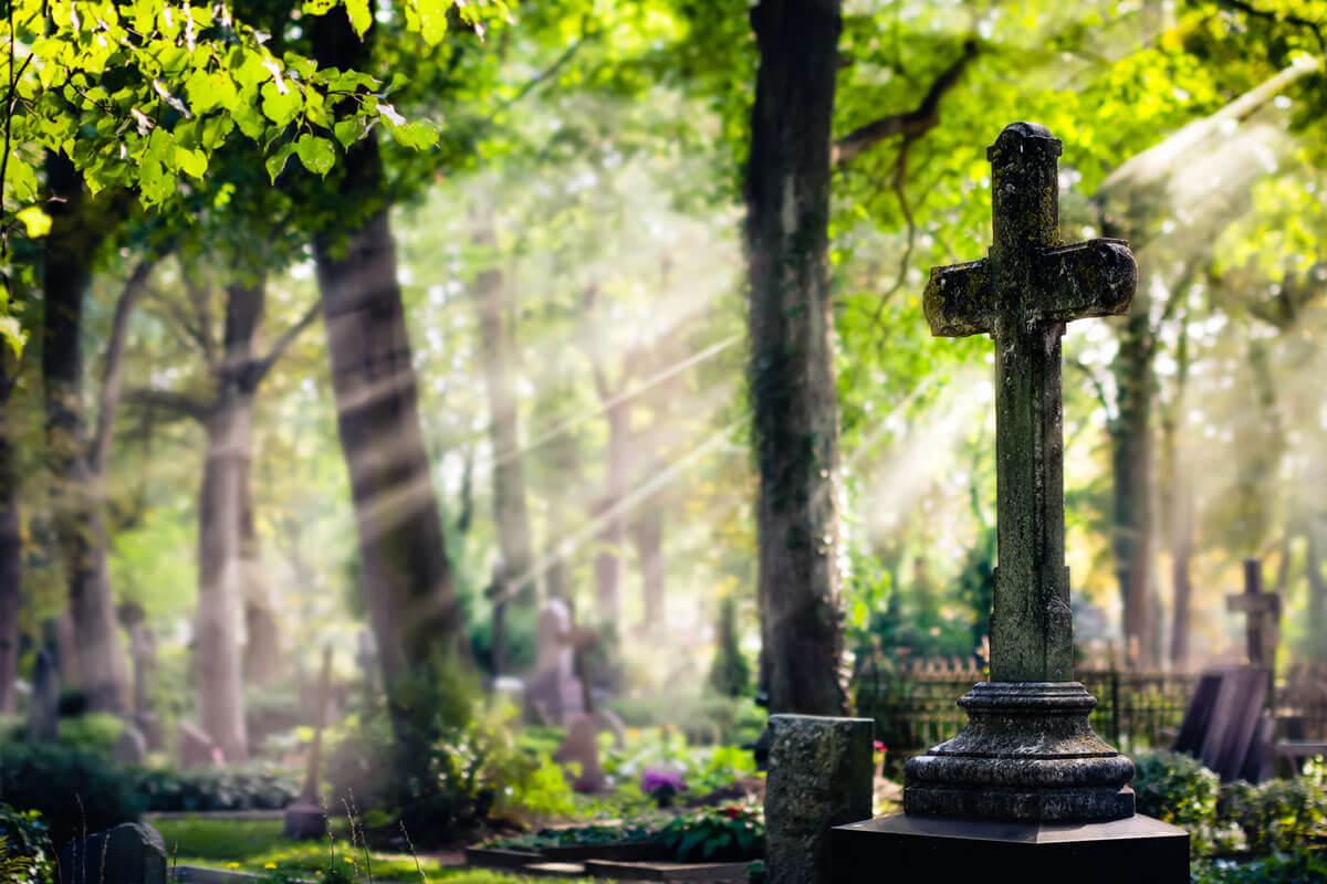 Woran die Deutschen sterben, © locrifa/Shutterstock.com